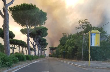 Incendio ad Ostia, in fiamme la pineta [GALLERY]